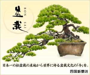 盆栽BONSAI