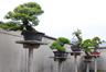 平松清寿園(ひらまつせいじゅえん)