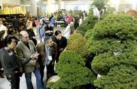 Photogallery: The situation in the hall<br>(Sunport Takamatsu, Ritsurin Garden, Tamamo Garden)