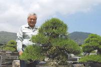Keiji Kandaka(Kandaka Shojuen bonsai garden)