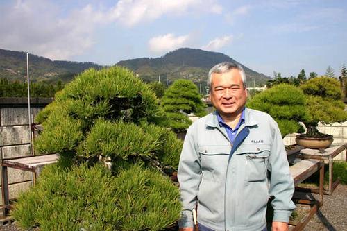 Kandaka Keiji with his wonderful bonsai at Kandaka Shojuen bonsai garden in Takamatsu's Kinashi town