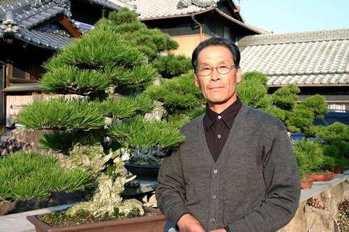 Mashima Yoshimi with his Shimagi (collection from islands) in Mashima bonsai garden in Takamatsu's Kokubunji town