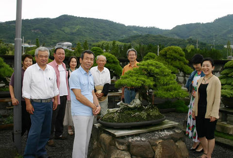His group taking picture with bonsai masterpiece