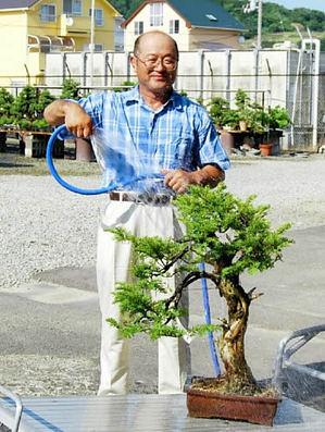 Yamaji, watering his trees