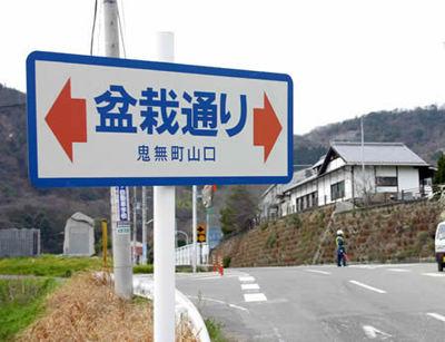 """""""Bonsai street"""" in Takamatsu's Kinashi town"""
