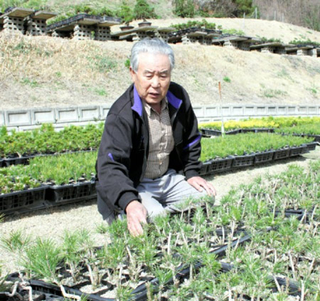 Ayada and the young trees grown by Tsugiki in his field in Takamatsu's Kokubunji town Man of Modesty