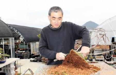 根の土を落とす花澤さん