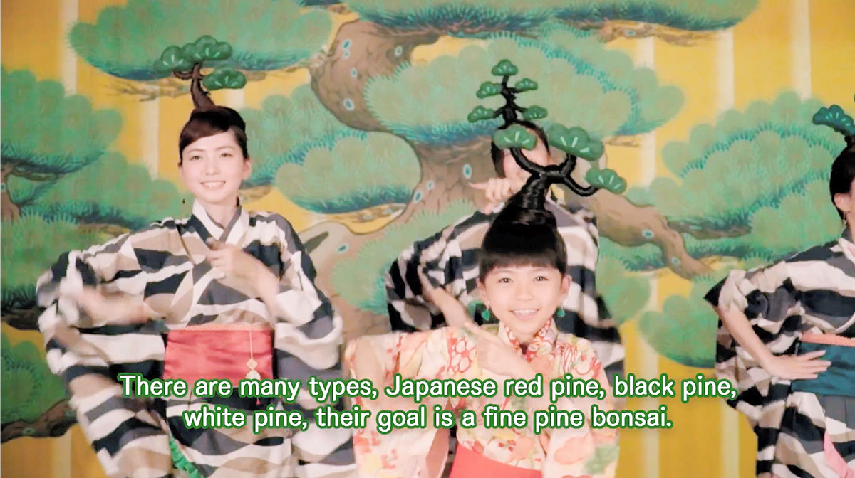http://bonsai.shikoku-np.co.jp/other/IP170805TAN000104000_02.jpg