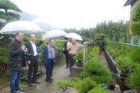 盆栽や庭園、米にPR 四国運輸局など メディア向けツアー