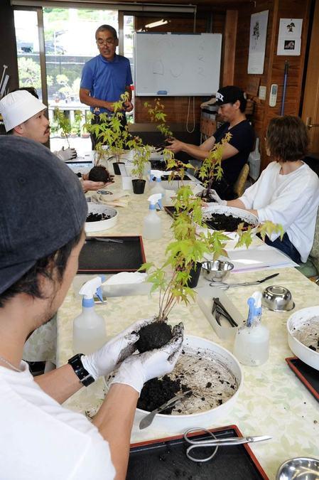 ワークショップの講師を目指して盆栽作りを学ぶ参加者=高松市鬼無町、花沢明春園