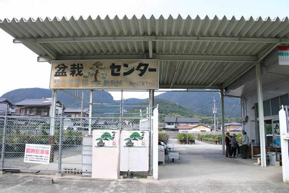 JA国分寺盆栽センター