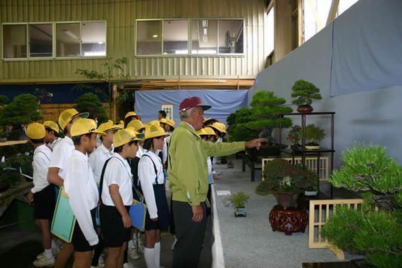A scene from this year's Kinashi Bonsai and Garden Plants Festival which was observed by some schoolchildren.