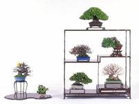 グリーンフェスタ国分寺 雅風展の最高賞作品展示