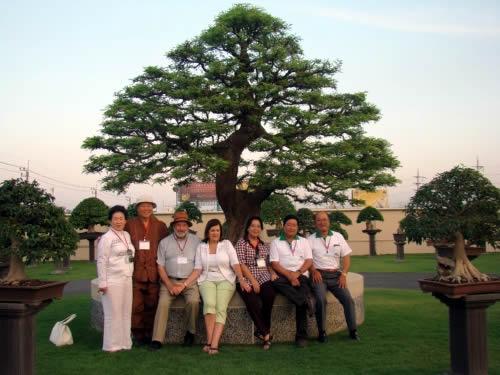 タイの代表的な樹タマリンダの下で