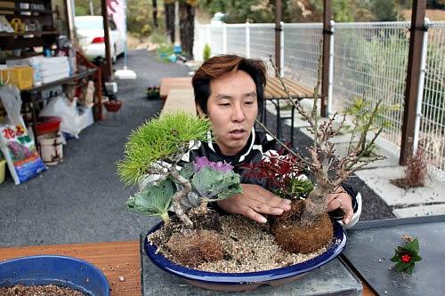 高植えの枝を見せる橋本さん