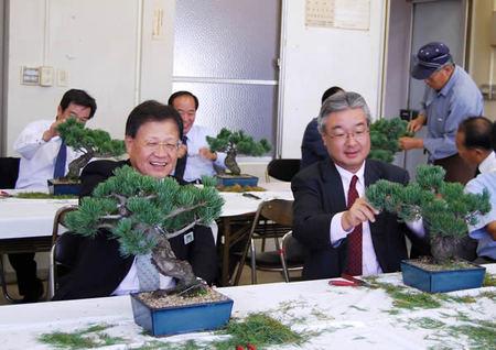 五葉松の剪定を体験する支社長たち