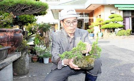 盆栽の世話をする森さん