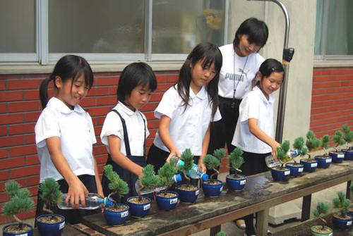 五葉松の苗に水を与える児童たち