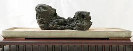 重要水石に認定された「加茂川石」