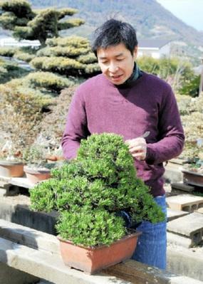 全国出展を目指し黒松寸梢の培養に励む松田三男さん
