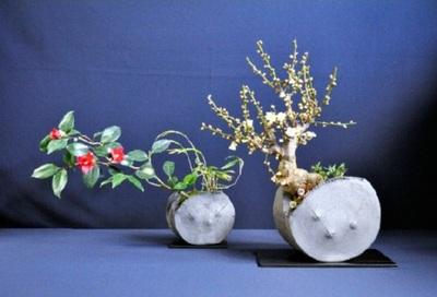 三河瓦に植えたツバキと梅